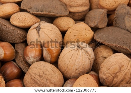different kinds of nuts as a background