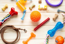 Different multicolored pet care accessories: ring, bones, leash, collar, balls on wooden background. Rubber and textile accessories for dogs. Top view, flat lay.