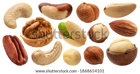 Different nuts collection, cashew, hazelnut, almond, brazil nut, walnut, peanut, pistachios, macadamia and pecan isolated on white background with clipping path