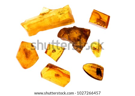 different pieces of amber on a white background. Amber of various colors and structure and shapes. Transparent and opaque pieces of amber. Natural amber #1027266457
