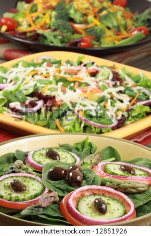 different salads perfect healthy dishes