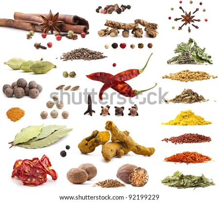 Different spices isolated on white background,  includes soft shadows, selective focus