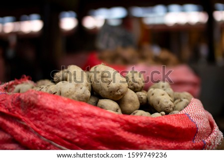 Different types and varieties of Peruvian organic potatoes in sacks at local market in Cusco, Peru. Natural healthy ingredient.