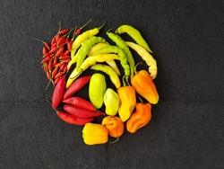 Different types of pepper :Capsicum chinense, Capsicum frutescens, Capsicum chinense, Capsicum baccatum. Manaus – Amazon, Brazil