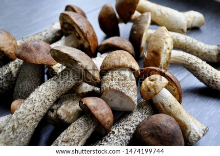 Different variants of compositions with mushrooms  #1474199744
