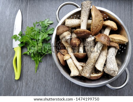 Different variants of compositions with mushrooms  #1474199750