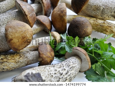 Different variants of compositions with mushrooms  #1474199774