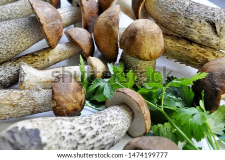 Different variants of compositions with mushrooms  #1474199777