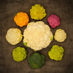 Different varieties of cabbage and cauliflower, top view.