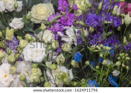Different varieties of fresh spring flowers for bouquets of decor and gifts. Floristry and small business concept