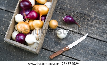 different varieties of onions in a tree box and kitchen knife #736374529