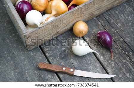 different varieties of onions in a tree box and kitchen knife #736374541