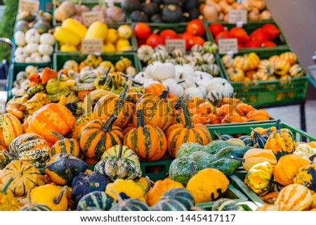 Different varieties of pumpkins are sold at the farmer's market, Germany
