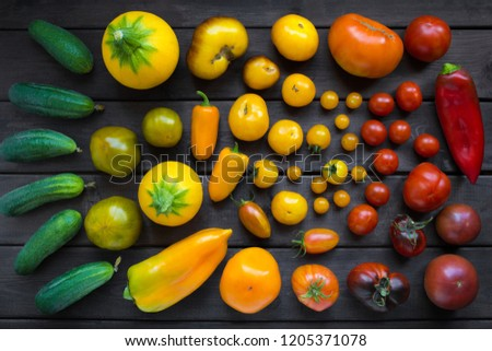 different varieties of vegetables the color of traffic lights - tomatoes, cucumbers, peppers, zucchini, top view. #1205371078