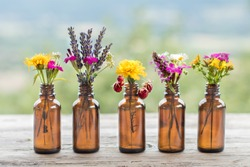 Different wildflowers bottle natural rustic background. Ayurveda Alternative Medicine Spa Wellness Herbal Health Wellbeing Aromatic Aromatherapy Phytotherapy Homeopathy Pharmacy Body Care Concept