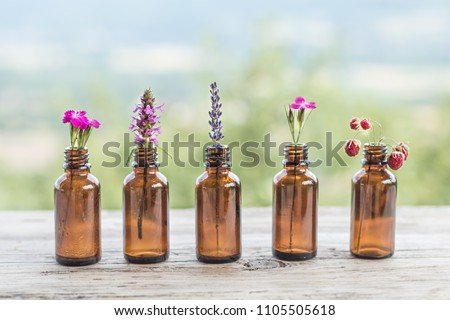 Different wildflowers bottle natural rustic background. Ayurveda Alternative Medicine Spa Wellness Herbal Health Wellbeing Aromatic Aromatherapy Phytotherapy Homeopathy Pharmacy Body Care Concept Foto stock ©