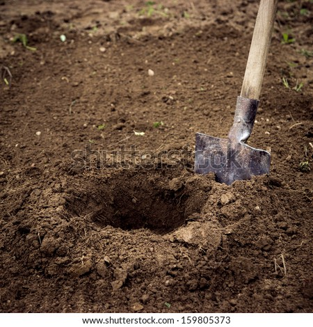 Dig A Hole. Planting Or Searching. Stock Photo 159805373 ...