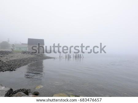 Digby Fog #683476657
