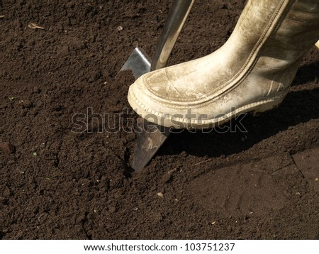 Digging the hole in the ground with shovel