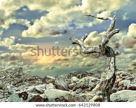 Digital art fantasy landscape scene with rocky arid environment against cloudy sunny sky