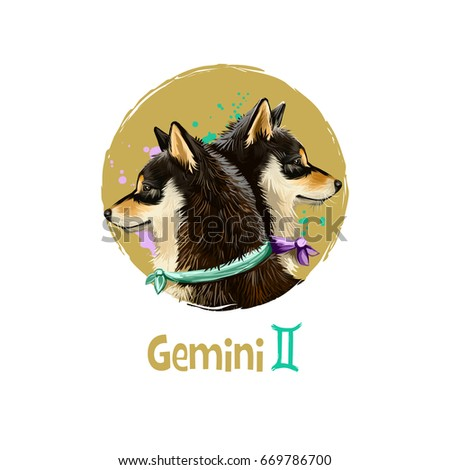 Digital art illustration of astrological sign Gemini. 2018 year of dog. Third of twelve zodiac signs. Horoscope air element. Logo sign with twins. Graphic design clip art for web, print. Add any text