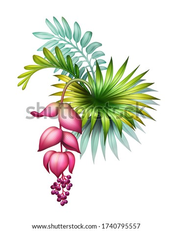 digital botanical illustration, wild jungle foliage arrangement with pink medinilla flower, tropical palm leaves, colorful bouquet, floral design isolated on white background ストックフォト ©