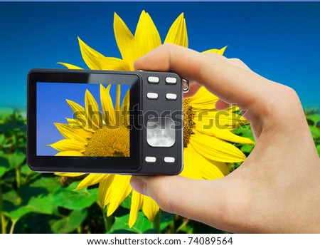 digital camera in hand on flower background
