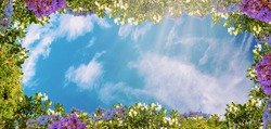 Digital ceiling fresco with colorful flowers and blue beauty sky with clouds. Natural sunny background