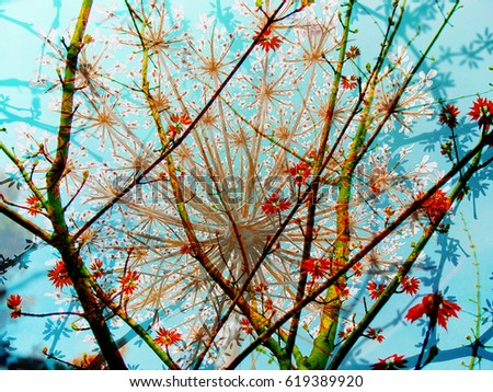 Digital composite image of trees and flowers