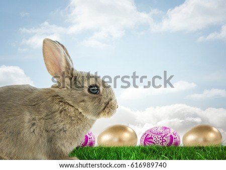 Digital composite of Easter rabbit with eggs in front of blue sky #616989740