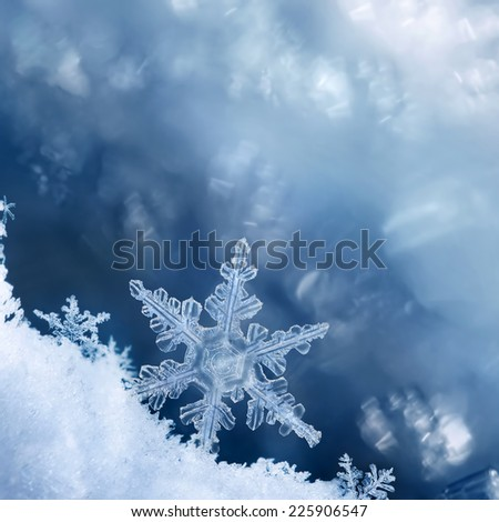 Digital composite of snowflakes and frost. #225906547