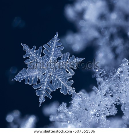 Digital composite of snowflakes and frost. #507551386