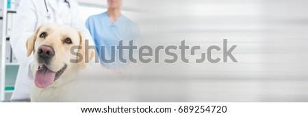 Digital composite of Vet couple standing behind a big dog