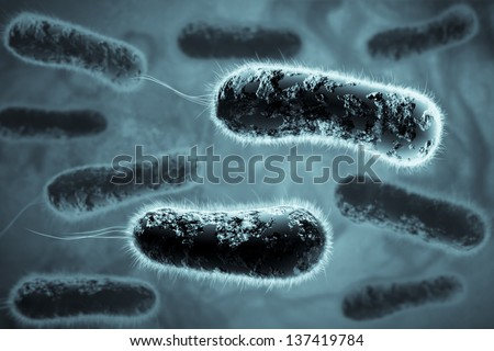 Digital 3D illustration of bacteria