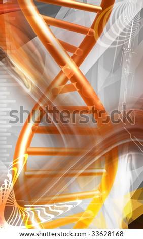 Digital illustration of a DNA   cells