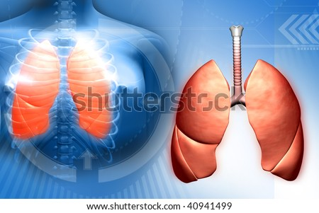 Digital illustration of a human body and lungs