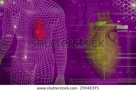 human body heart. of heart and human body