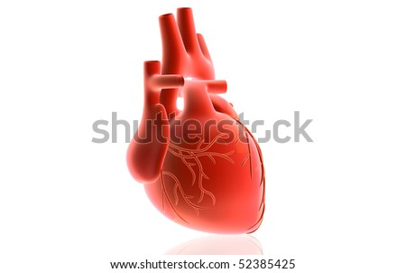 Digital illustration of  heart  in isolated  background