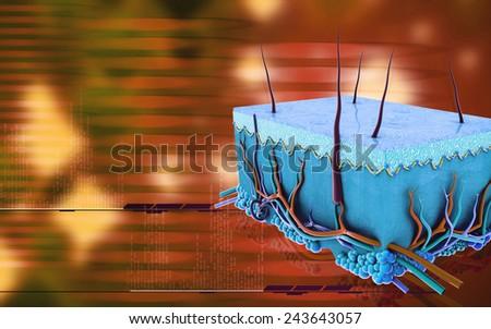 Digital illustration of Skin in colour background #243643057