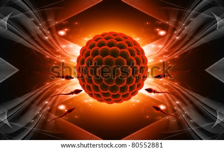 Digital illustration of Sperm and Egg  in colour background - stock photo