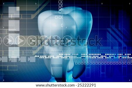 Digital illustration of teeth in blue colour