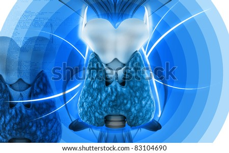 Digital illustration of  thyroid in colour  background