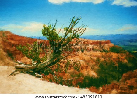 Digital painting - Old Tree at the rim in Bryce Canyon - Fine Art