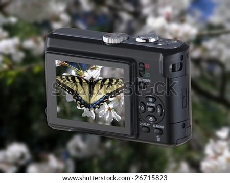 Digital Point & Shoot Camera with butterfly