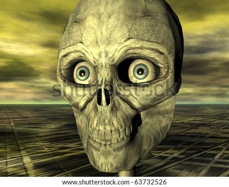 digital rendering of a skull