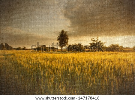 Digital structure of painting. Field of corn landscape