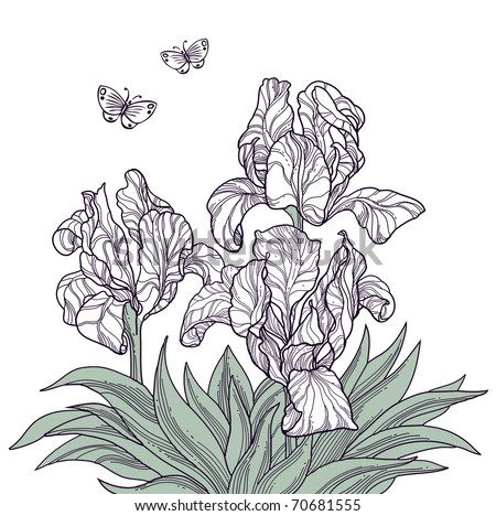 digital tablet drawing of spring flowers and butterflies line art decoration