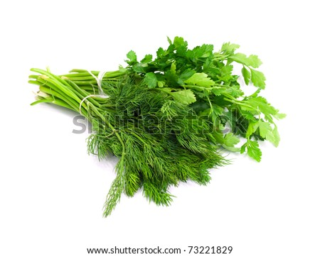 dill parsley to spices bunch isolated on white background