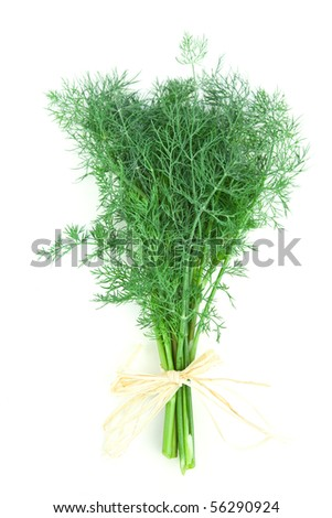 Dill tied together with raffia isolated on white