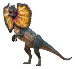 Dilophosaurus (Male) is a carnivore genus of theropod dinosaur that lived during the Early Jurassic, Dilophosaurus isolated on white background with a clipping path